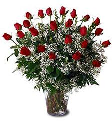 çiçek siparişi sitesi  Cam yada mika vazo içerisinde 15 adet kirmizi güller,cipsofi
