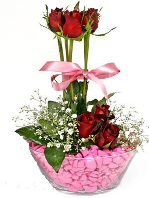 Ankara Polatlı İnternetten çiçek siparişi  SEVIYORUM DIYENLER 7 kirmizi gül tanzim