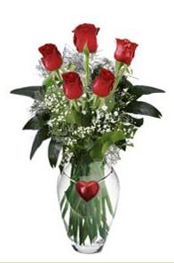 internetten çiçek siparişi  5 adet kirmizi gül ve kalp çubuklu