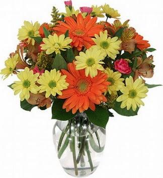 Polatlı hediye sevgilime hediye çiçek  vazo içerisinde karışık mevsim çiçekleri