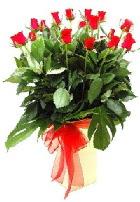 Vazoda 15 adet kırmızı gül  Ankara Polatlı online çiçek gönderme sipariş