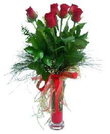 vazo içerisinde 5 kırmızı gül  Polatlıda çiçekçi güvenli kaliteli hızlı çiçek
