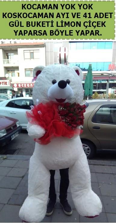 Koskocaman beyaz ayı ve 25 adet gül çiçek siparişi sitesi
