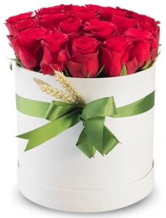 Özel kutuda 25 adet kırmızı gül çiçeği  Polatlı çiçek satışı