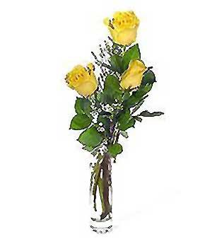 internetten çiçek siparişi  3 adet kalite cam yada mika vazo gül