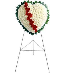 internetten çiçek siparişi  kalbimin tek sahibisin benim