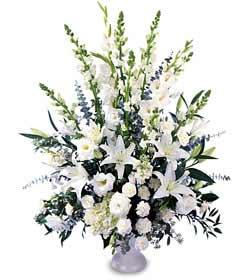 Ankara Polatlı online çiçek gönderme sipariş  saf temiz sevginin gücü çiçek modeli