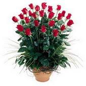 Polatlı uluslararası çiçek gönderme  10 adet kirmizi gül cam yada mika vazo