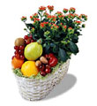 Ankara Polatlı İnternetten çiçek siparişi  meyva sepeti ve kalanche