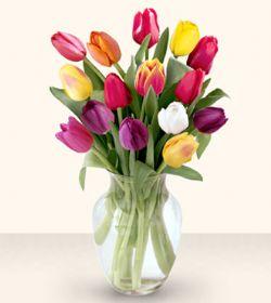 Polatlıdaki çiçekçiler  13 adet cam yada mika vazoda laleler