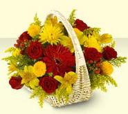 14 şubat sevgililer günü çiçek  sepette mevsim çiçekleri