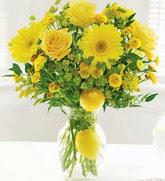 Polatlı çiçek online çiçek siparişi  cam yada mika Vazoda sari gül ve çiçekler