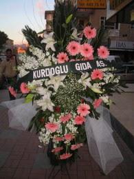 kazablanka,gerbera,sebboy ferforje  çiçekçi mağazası