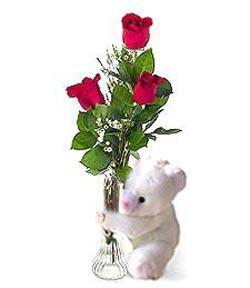 oyuncak ve 3 adet gül çiçek siparişi sitesi