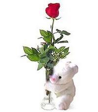 oyuncak ve gül tanzim   Polatlı yurtiçi ve yurtdışı çiçek siparişi