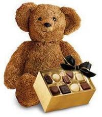 çikolata ve oyuncak ayicik  ucuz çiçek gönder