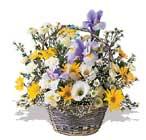 Polatlıdaki çiçekçiler çiçek servisi , çiçekçi adresleri  karisik karma kir çiçegi sepeti
