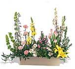 bahçe deymiscesine    Polatlıda çiçek firması çiçek gönderme