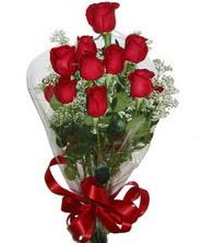 9 adet kaliteli kirmizi gül   Ankara Polatlı online çiçekçi , çiçek siparişi