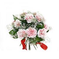 pembe renkte 9 karanfil   Polatlı çiçek satışı