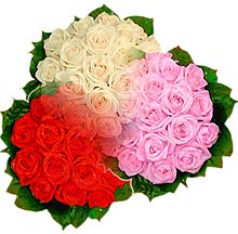 3 renkte gül seven sever   Polatlı Ankara çiçek , çiçekçi , çiçekçilik