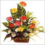 sepet içerisinde gerberalar   14 şubat sevgililer günü çiçek