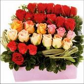15 adet renkli gül ve cam   çiçekçi mağazası