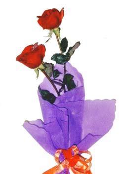 2  adet kirmizi gül buketi   Polatlı Ankara çiçek , çiçekçi , çiçekçilik