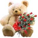 kocaman ayicik ve 10 gül   Polatlı Ankara çiçek , çiçekçi , çiçekçilik
