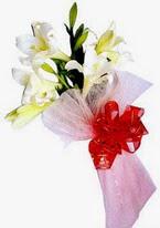 Polatlı Ankara çiçek , çiçekçi , çiçekçilik  3 adet kazablanka buketi