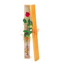 ince  kutuda  1  gül   Ankara Polatlı çiçek yolla