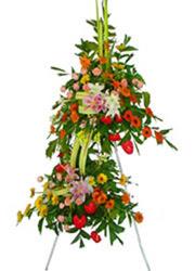 çift katli perförje çiçegi  çiçekçi mağazası