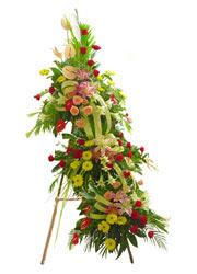 üç katli perförje çiçegi  çiçekçi mağazası