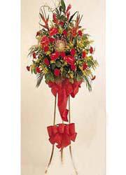 tek katli perförje çiçegi  çiçekçi mağazası