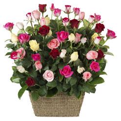41 adet karisik gül sepeti   Polatlı çiçek siparişi vermek