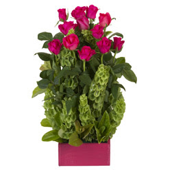 12 adet kirmizi gül aranjmani  Polatlıya çiçek çiçek mağazası , çiçekçi adresleri