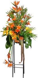 çiçek siparişi sitesi  perförje tanzimi dügün nikah ve açilislara