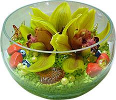 Polatlı cicek , cicekci  3 adet cam içerisinde kandil orkide