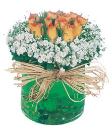 Polatlı internetten çiçek satışı  Cam yada mika içerisinde 9 adet  gül aranjmani