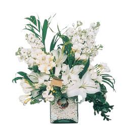 internetten çiçek siparişi  sadece beyazlardan olusmus mevsim cam yada mika tanzim