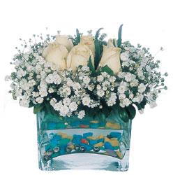çiçekçi mağazası  mika yada cam içerisinde 7 adet beyaz gül