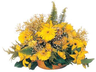 Polatlıya çiçek Ankara çiçekçi telefonları  karisik mevsim sepeti - mevsimsel çiçekler