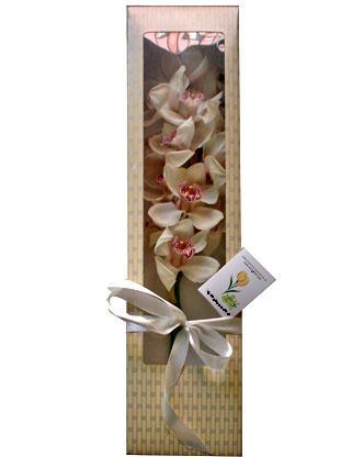 Polatlı anneler günü çiçek yolla  ÖZEL SEVENLERE 1 DAL ORKIDE