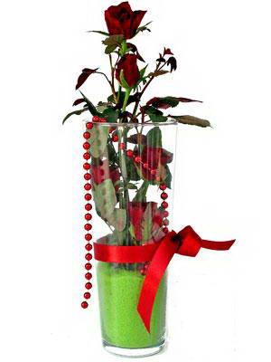 Ankara Polatlı online çiçek gönderme sipariş  Cam yada mika içerisinde 9 adet kirmizi gül - sevdiklerinize özel