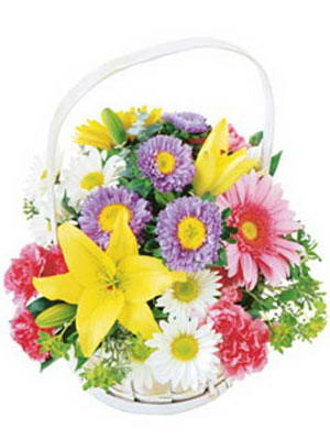 Ankara Polatlı online çiçekçi , çiçek siparişi  Mevsim sepeti karisik mevsim çiçekleri
