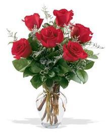 Polatlı çiçek gönderme sitemiz güvenlidir  7 adet kirmizi gül cam yada mika vazoda sevenlere