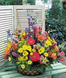 Polatlı hediye sevgilime hediye çiçek  karisik mevsim sepet çiçegi