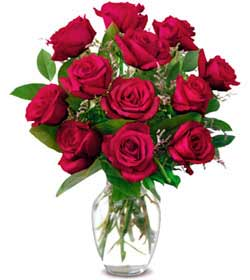 Ankara Polatlı online çiçek gönderme sipariş  1 düzine kirmizi gül sevenlere özel vazo gülleri