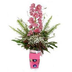 Polatlı Ankara hediye çiçek yolla  cam yada mika vazo içerisinde tek dal orkide çiçegi