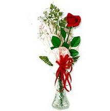 çiçekçi mağazası  1 adet kirmizi gül cam yada mika vazoda